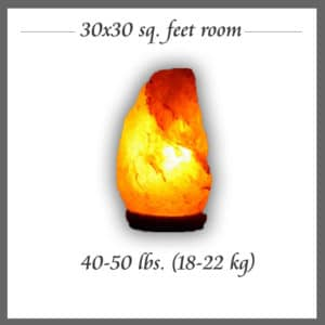 Himalayan Salt Lamp room size 4