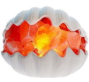sea shell shaped Himalayan salt lamps