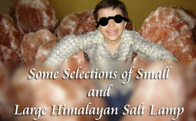Some Selections Of Small And Large Himalayan Salt Lamp