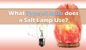 What type of bulb does a salt lamp use