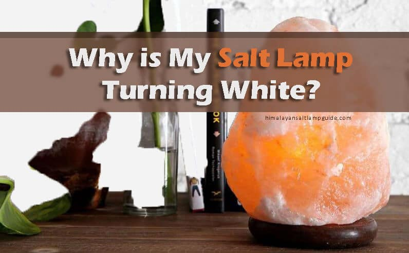 Why is My Salt Lamp Turning White