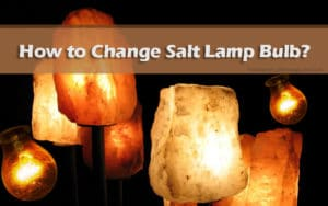 How to set up and change salt lamp bulb